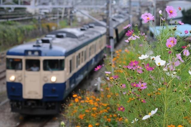 20111030_115-03_DSC_7147s.JPG